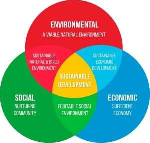 Social Development For Sustainable Development