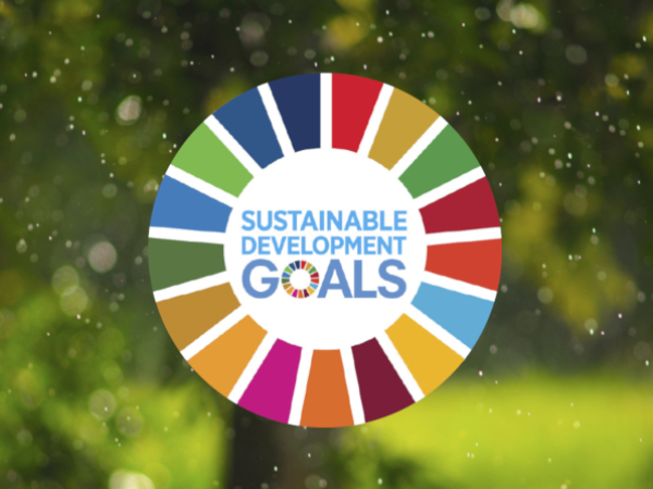 India and Sustainable Development Goals